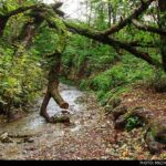 Kaboud-Val Waterfall1448435654247_isna-13