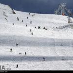 Ski (22)