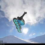 Ski (25)