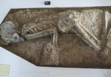 7,000-year-old skeleton-17