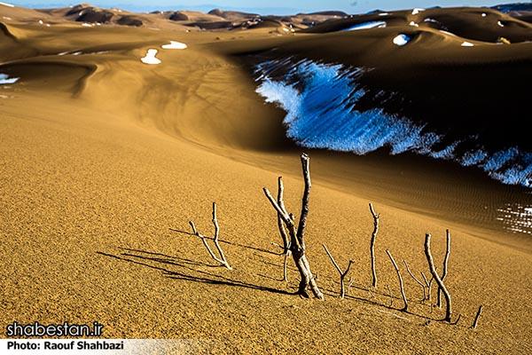Maranjab Desert64