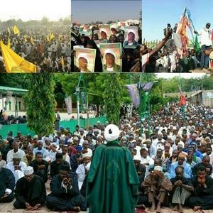 Nigerian Shia