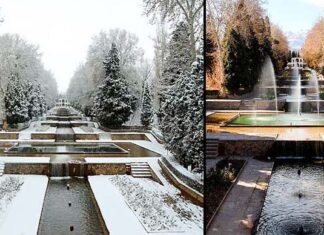Shazdeh Garden11