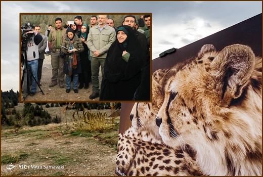 Ebtekar-Cheeta
