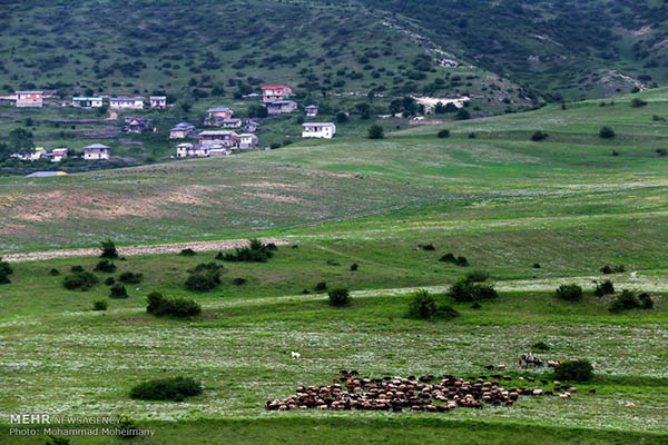 Golestan province_9930