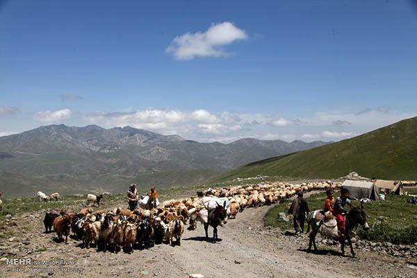 Nomads of Arasbaran -66-