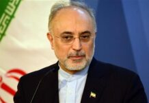 Head of the Atomic Energy Organization of Iran (AEOI) Ali Akbar Salehi