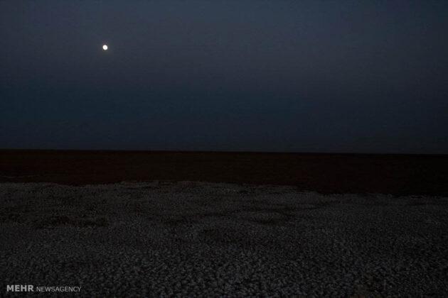 Great Salt Desert_12