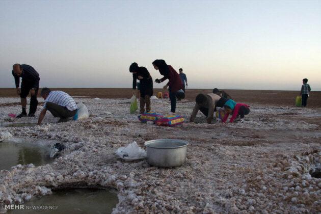 Great Salt Desert_14
