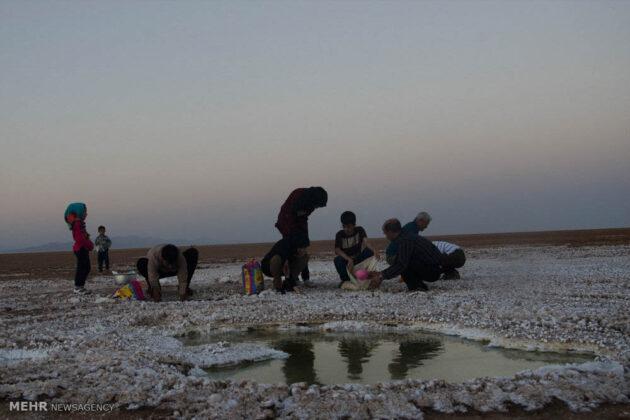 Great Salt Desert_8