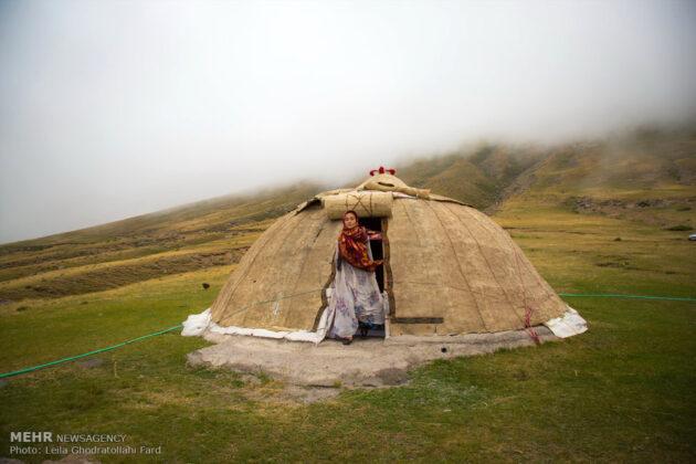 Shahsevan nomad