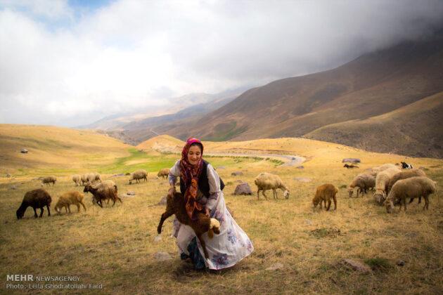 Shahsevan nomad2