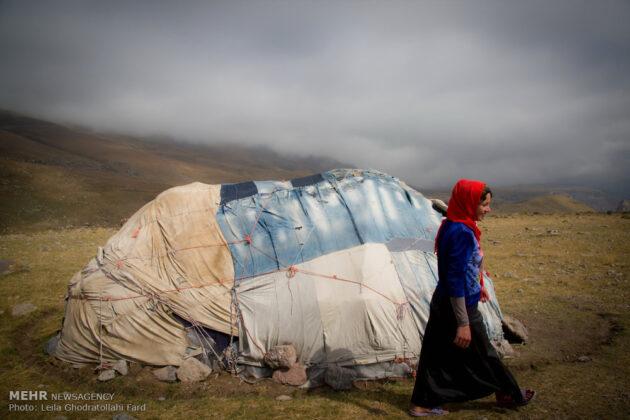 Shahsevan nomad_18