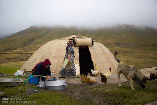 Shahsevan nomad_22