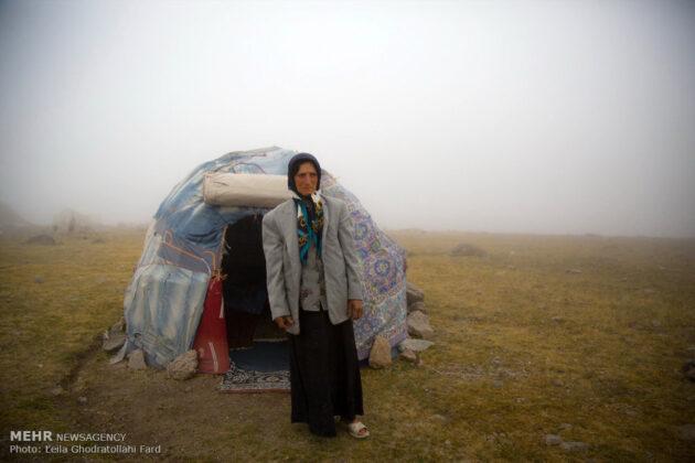 Shahsevan nomad_23
