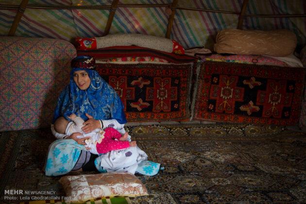 Shahsevan nomad_31