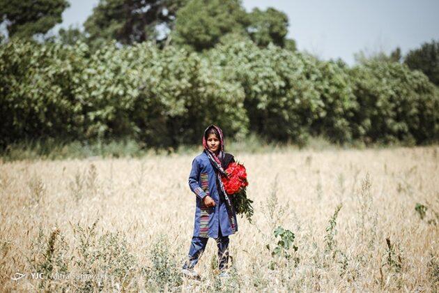 children- flowers_937