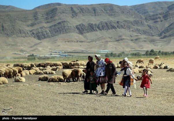 wedding-northern-khorasan-33
