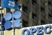 OPEC Fund Earmarks $500,000 to Help Iran Fight COVID-19