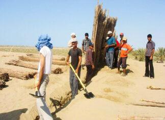 Desert Greening-Hormozgan