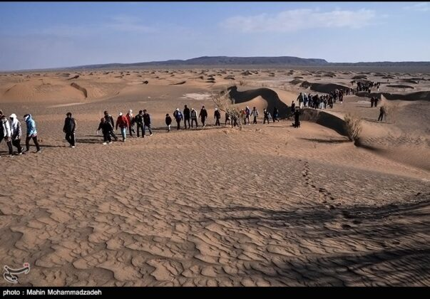 Loot Desert