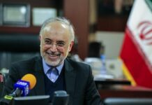 Salehi - Iran nuclear chief