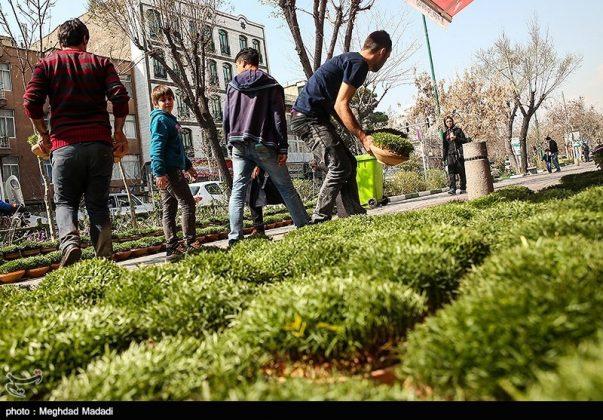 الايرانيون والنوروز 15