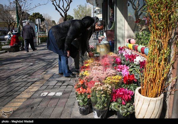 الايرانيون والنوروز 11