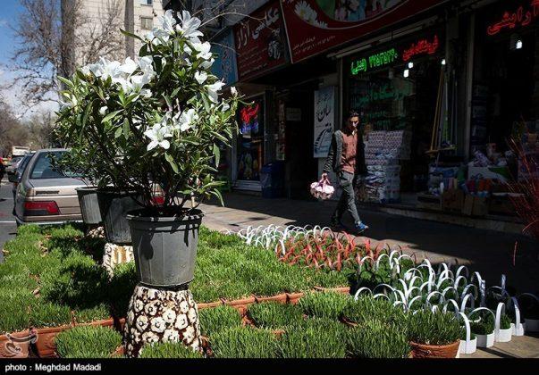 الايرانيون والنوروز 9