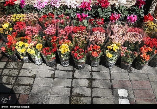 الايرانيون والنوروز 26