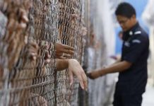 مرگ 118 مهاجر در بازداشتگاههای مالزی