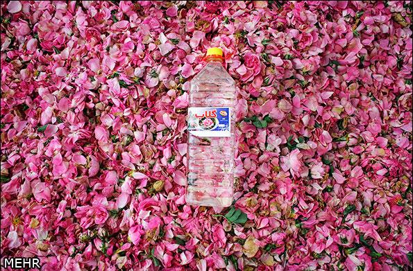 صناعة ماء الورد في ايران-22