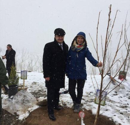 Tree planting in Tehran