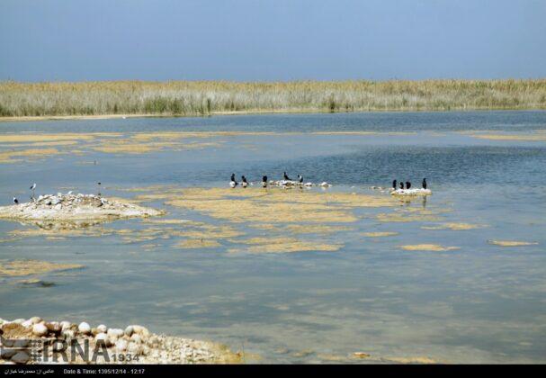 Hurolazim Wetland