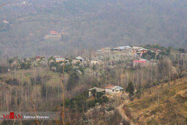 Mazandaran, Northern Iran