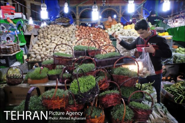 Iranian People Preparing for Nowruz (3)