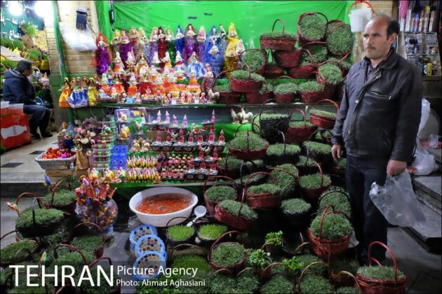Iranian People Preparing for Nowruz (4)