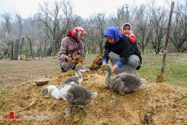 روستاهای مازندران