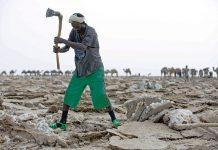 زندگی مدرن، مخل تجارت باستانی نمک در اتیوپی
