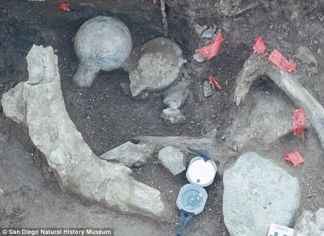 تلاش باستانشناسان برای جعل تاریخ بشر به نفع آمریکا