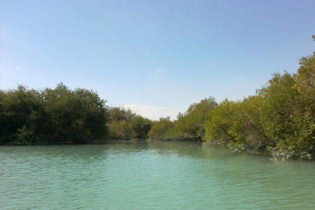 جزيرة قشم جوهرة الخليج الفارسي5