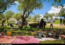 Iranians Celebrate Nature Day in Outdoor Picnics