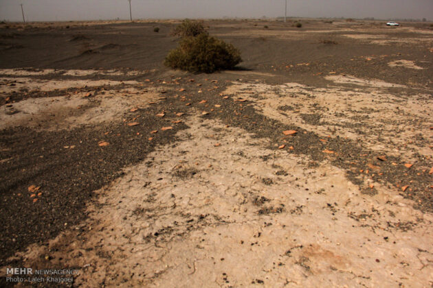 Sand Storm in Southern Iran Unearths Ancient City (19)