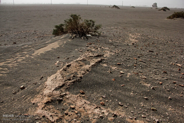 Sand Storm in Southern Iran Unearths Ancient City (20)