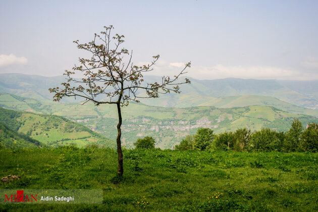 Spring in Baharestan, North of Iran (7)