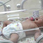 تولد یک میلیون نوزاد آمریکایی به کمک روشهای آزمایشگاهی