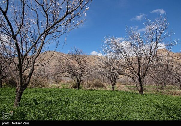Early Days of Spring in Iran's Ardabil (12)