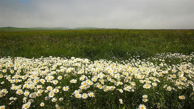 Early Days of Spring in Iran's Ardabil (3)