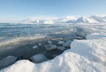 قطب شمال 2 برابر سریعتر از سایر نقاط جهان گرم میشود