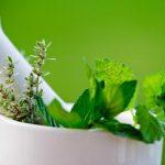نباتات طبية لمرض السكري